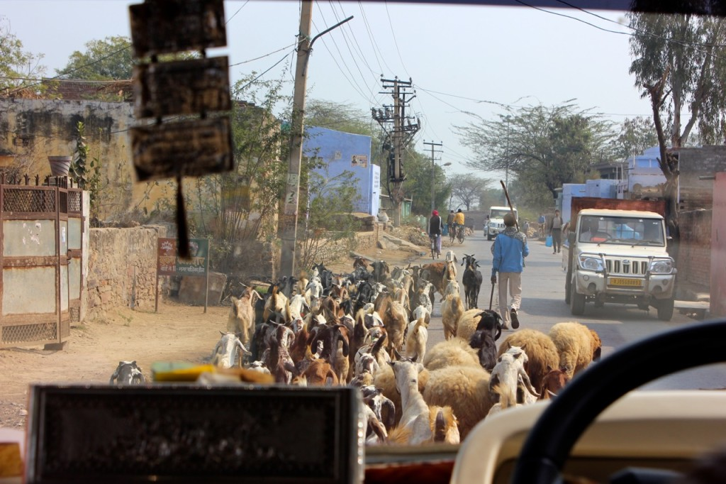 Rajasthan_on_the_road